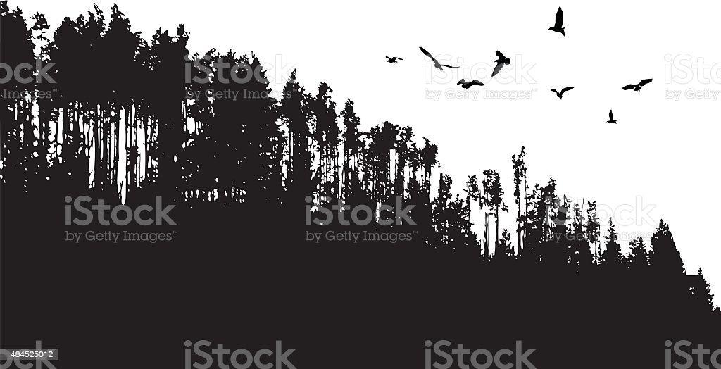 Birds Flying Over Treeline vector art illustration