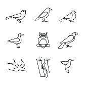 Birds icons thin line art set
