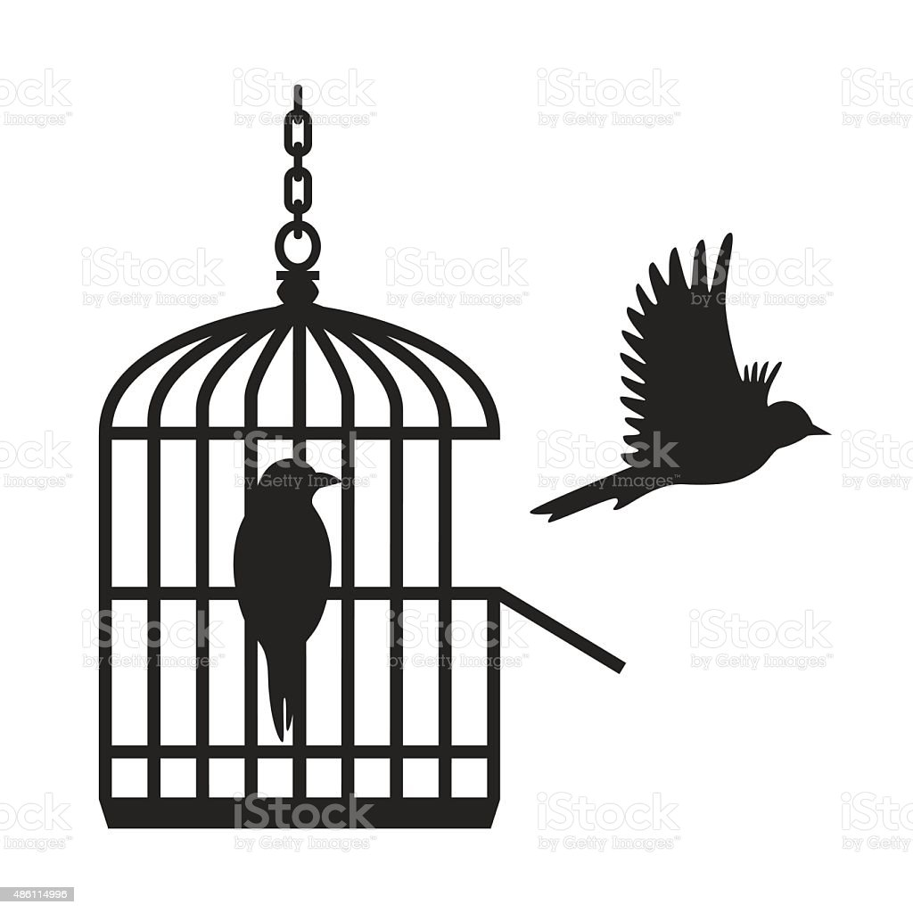 Birds in open birdcage - VECTOR vector art illustration