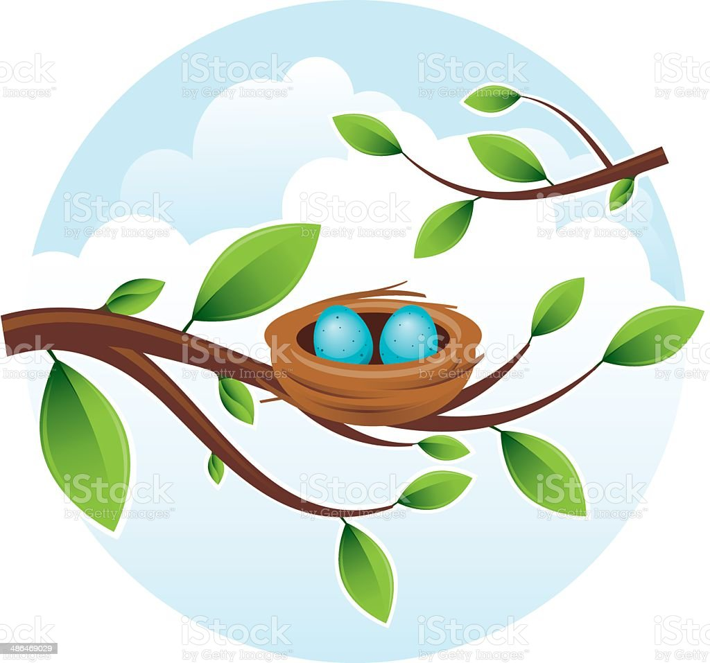 Bird's Nest with Eggs vector art illustration