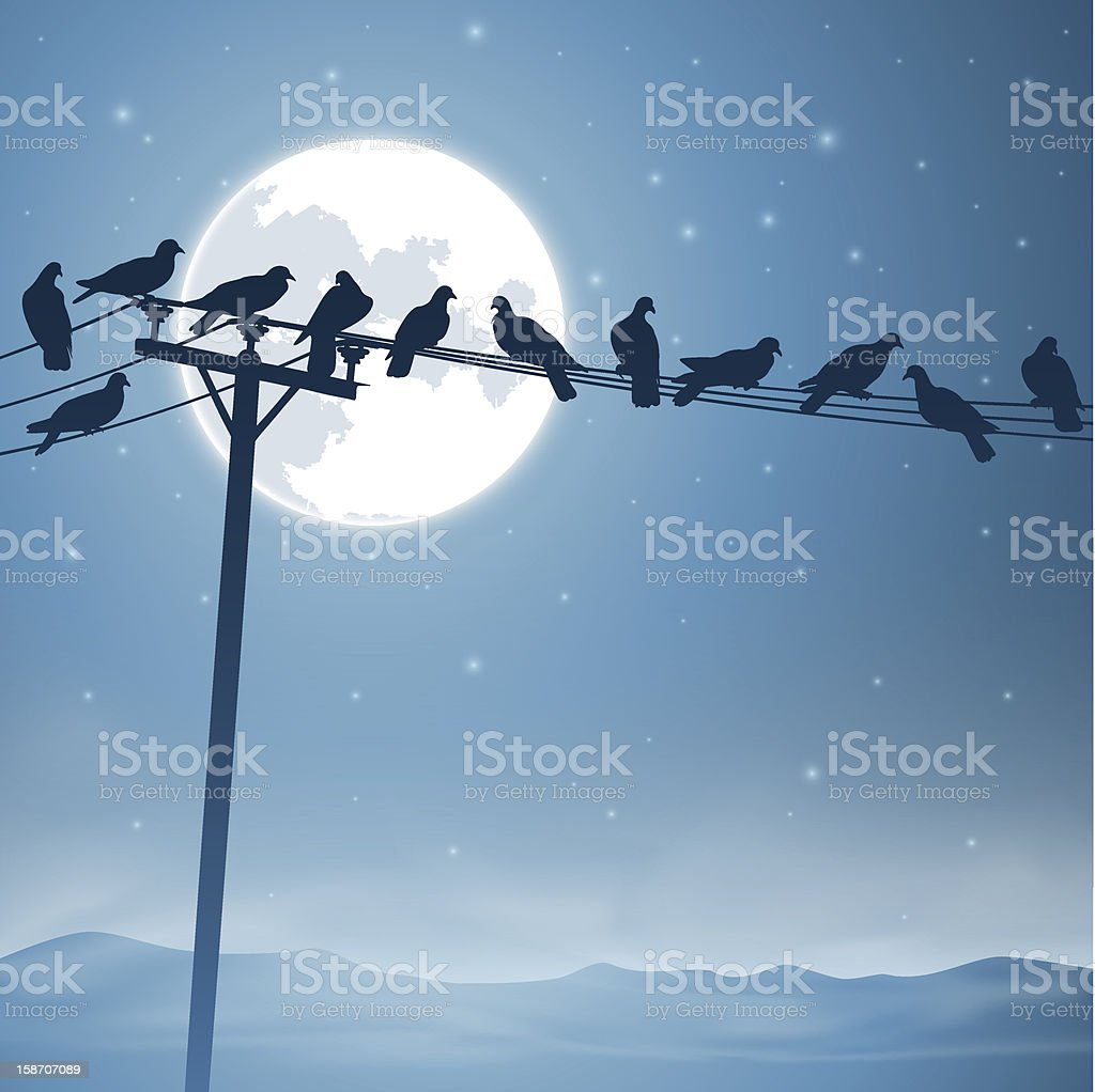 Birds on a Line royalty-free stock vector art