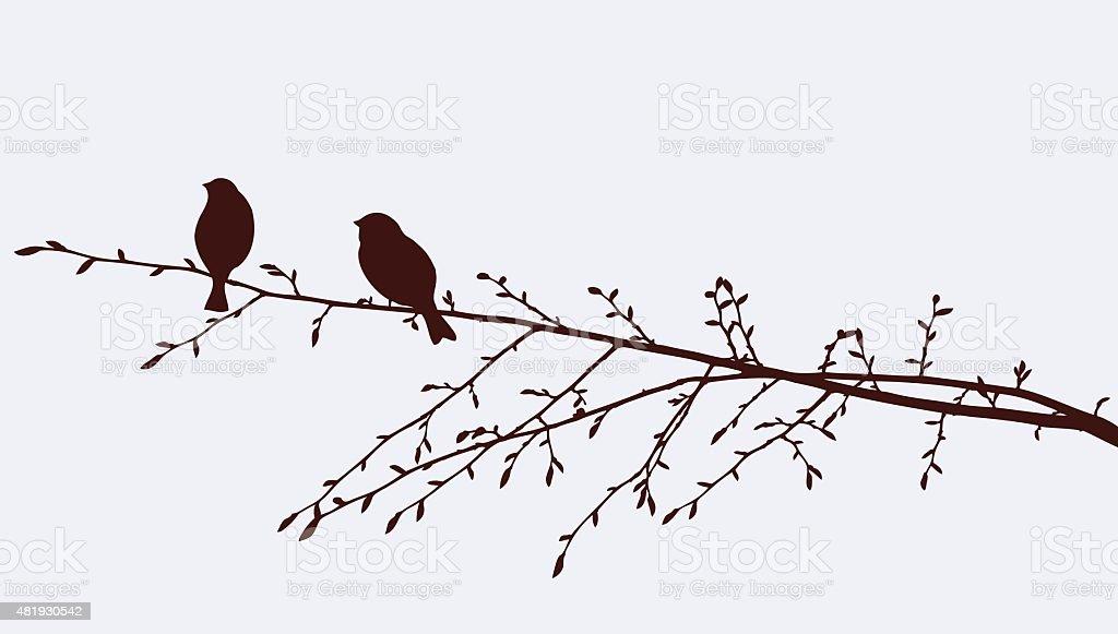 birds on a sprig vector art illustration