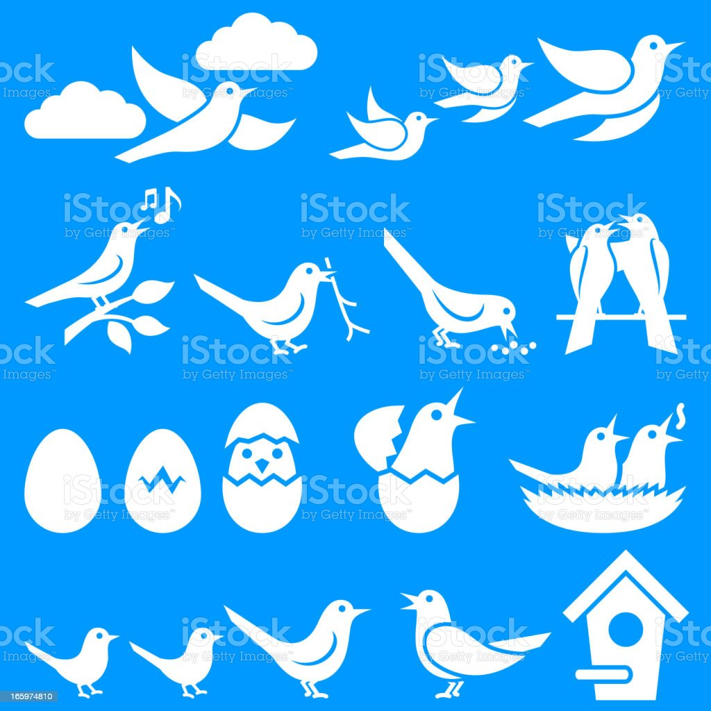 Birds on Blue Summer Background vector art illustration