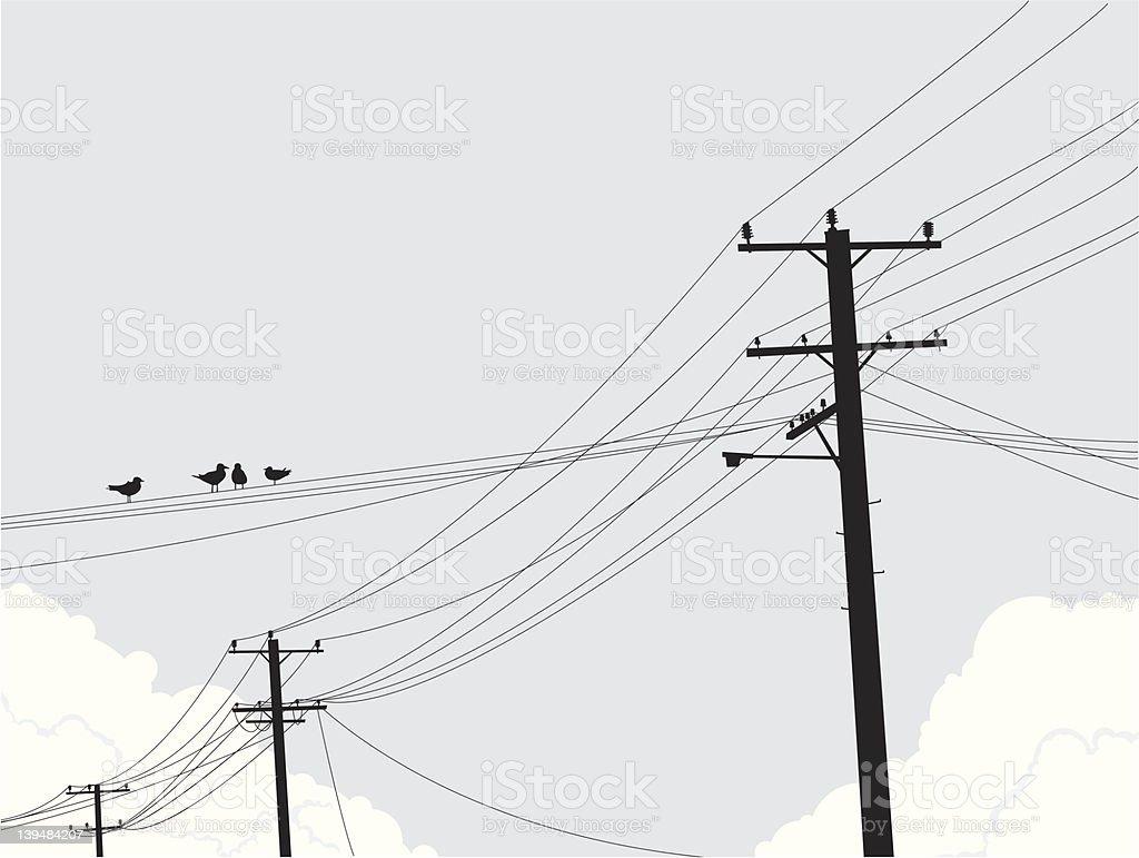 Birds on Powerlines vector art illustration