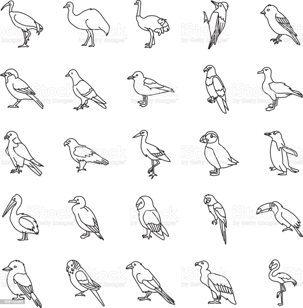 Birds outlines vector icons vector art illustration