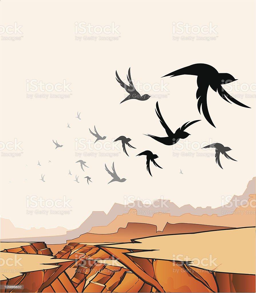 Birds Over Canyon vector art illustration