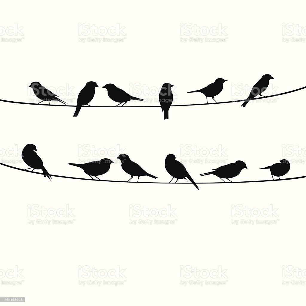 birds resting on wire vector art illustration