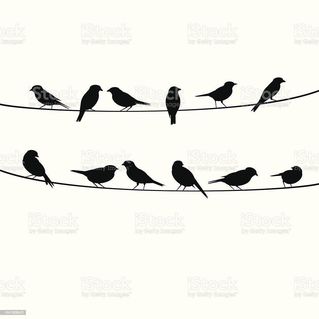 birds resting on wire vector art illustration