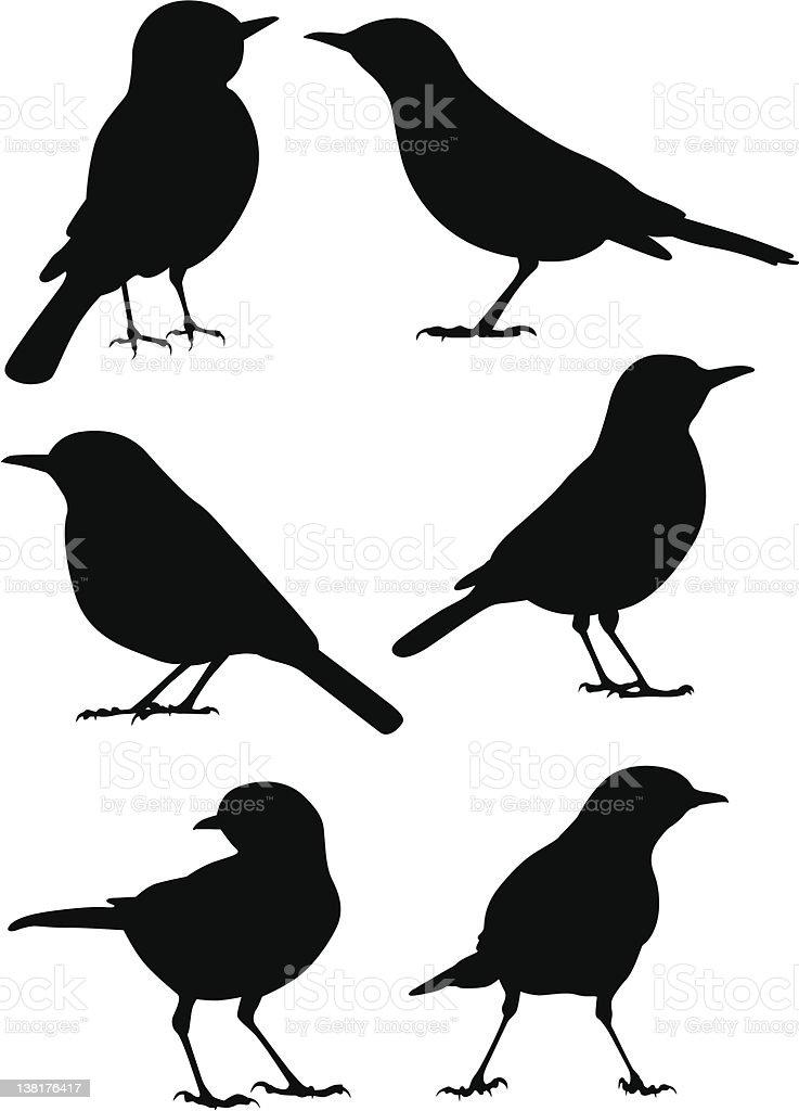 Birds Silhouette - 6 different vector illustrations vector art illustration