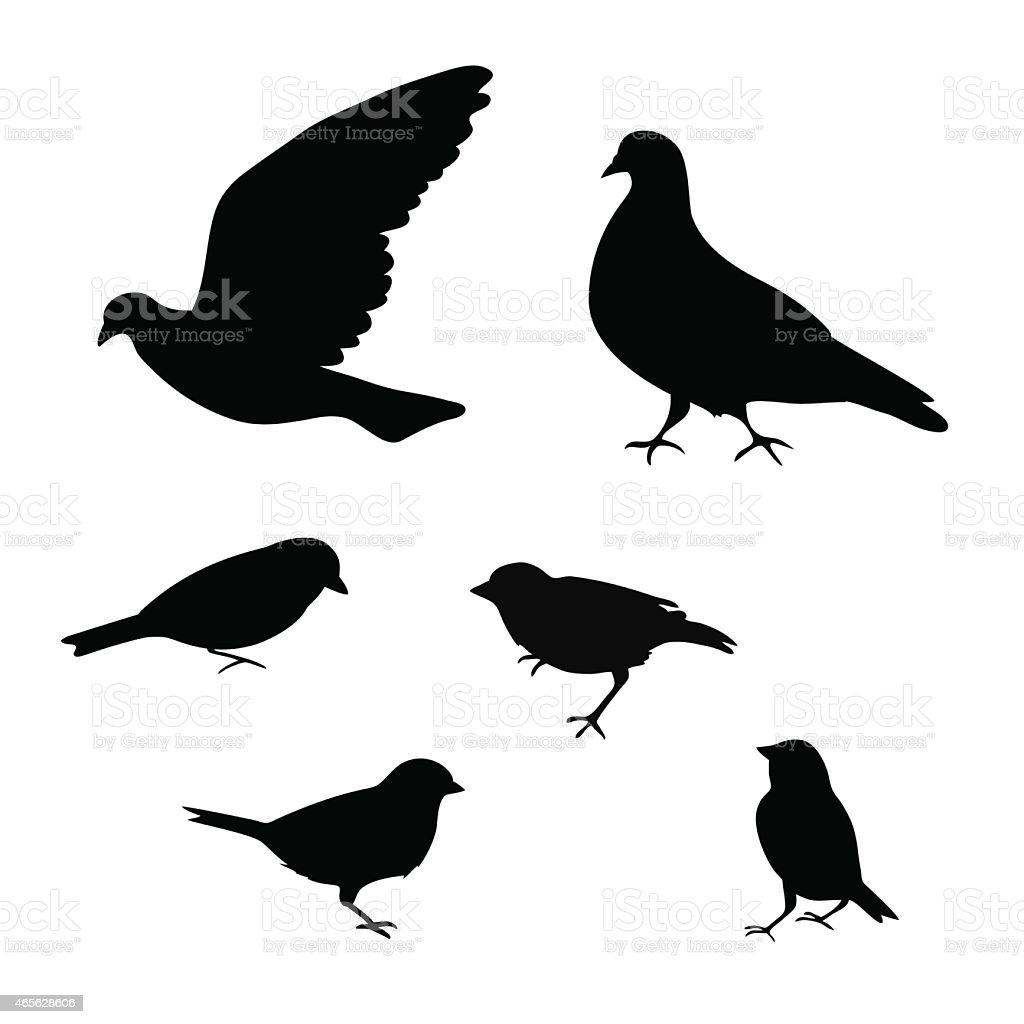 Birds silhouette on white background, vector illustration vector art illustration