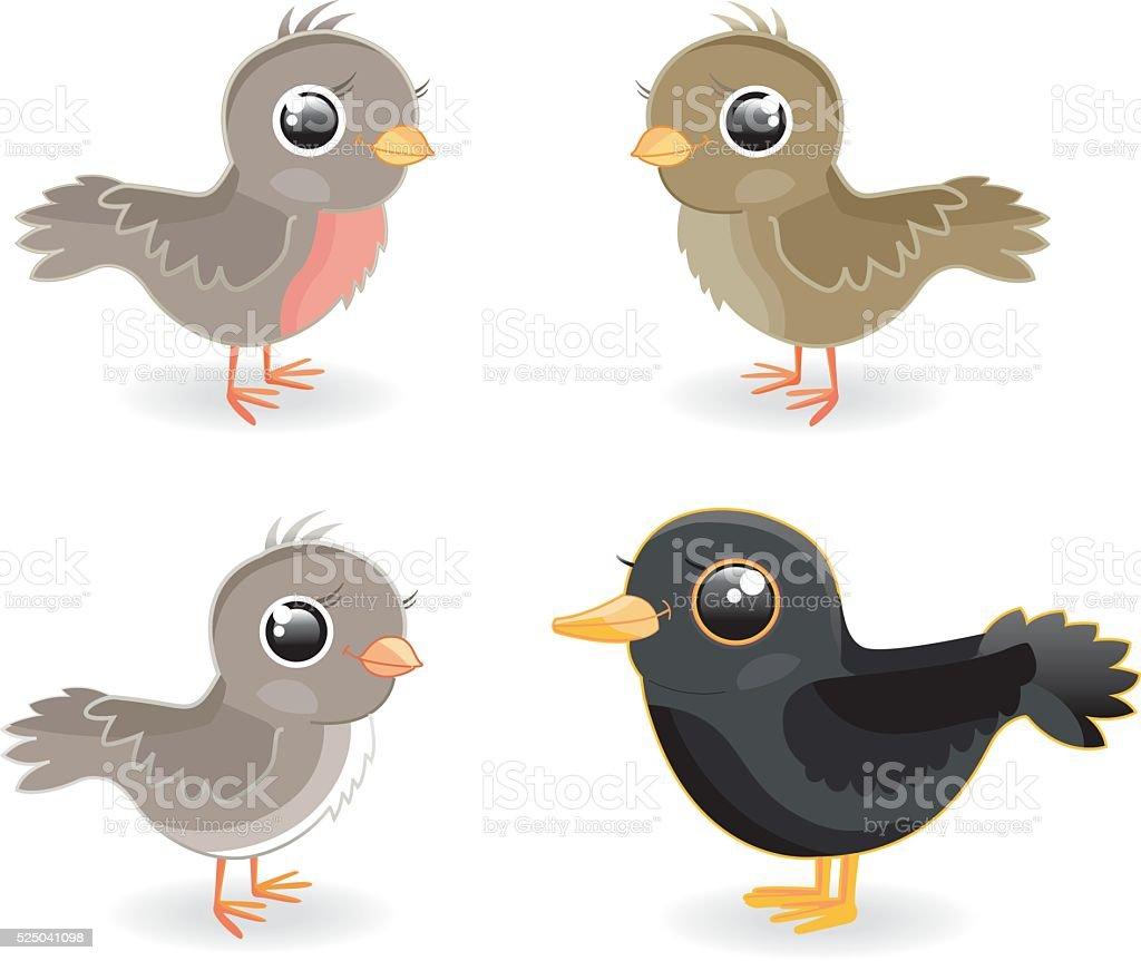 Birds (4various) vector art illustration
