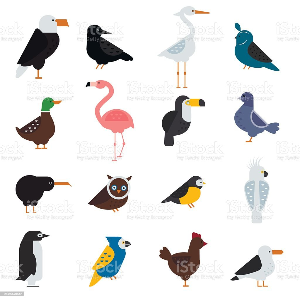 Birds vector set illustration. Eagle, parrot. Pigeon and toucan. Penguins vector art illustration