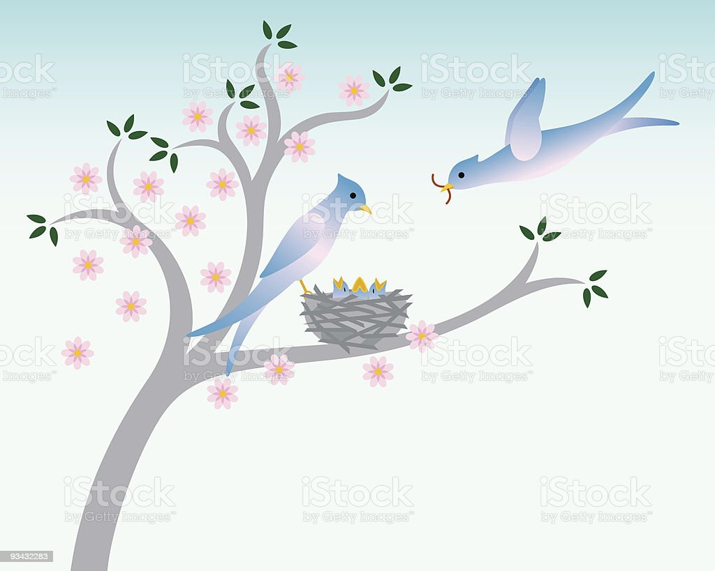 Birds with nest in Spring royalty-free stock vector art
