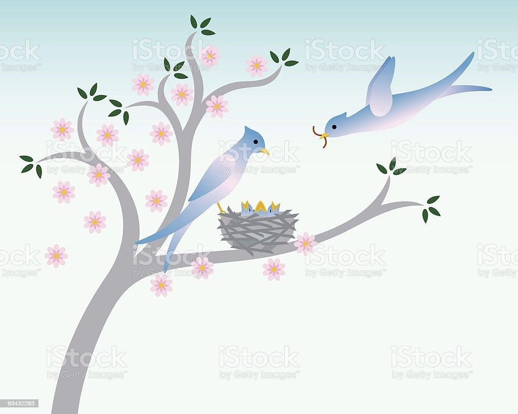 Birds with nest in Spring vector art illustration