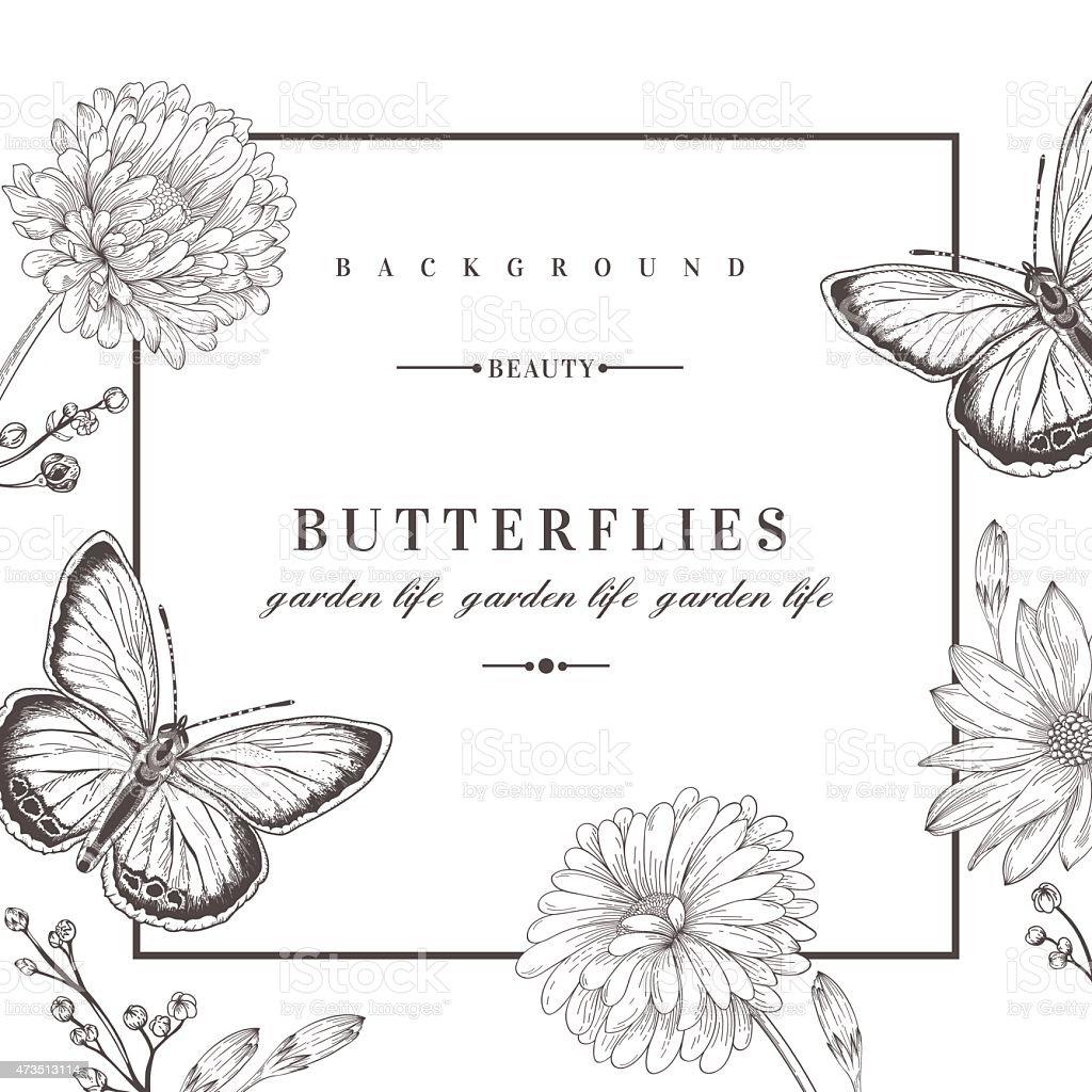 Black and white background with flowers and butterflies vector art illustration