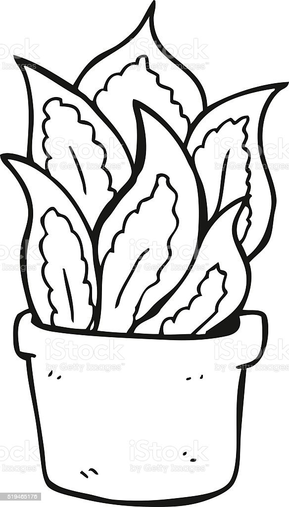 Haus clipart schwarz weiß  Schwarz Und Weiß Cartoon Haus Pflanze Vektor Illustration ...