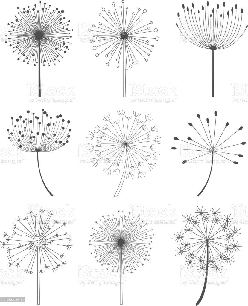 Black and White Dandelions Set Vector Illustration vector art illustration