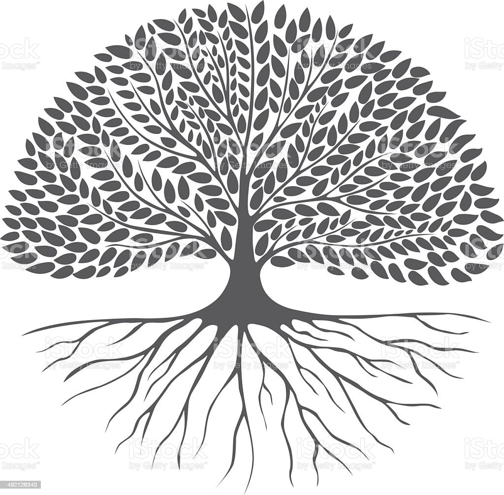 Black and white drawing of deciduous tree. Black silhouette. vector art illustration