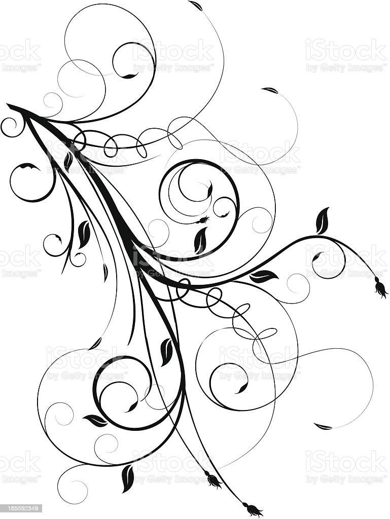 Black and white floral vine graphic vector art illustration