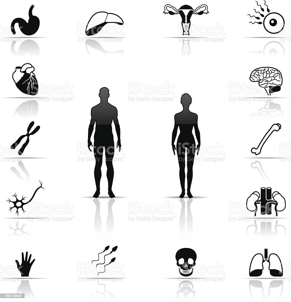 Black and white human body icon set vector art illustration