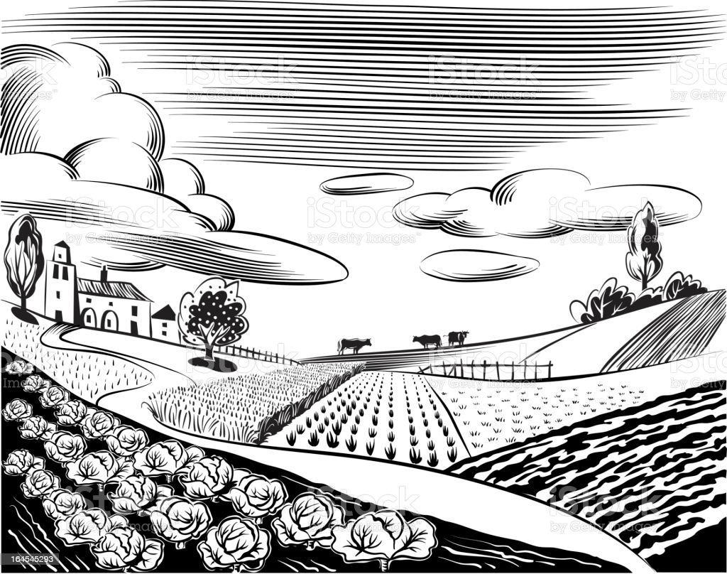 Black and white illustration of church and farm fields vector art illustration