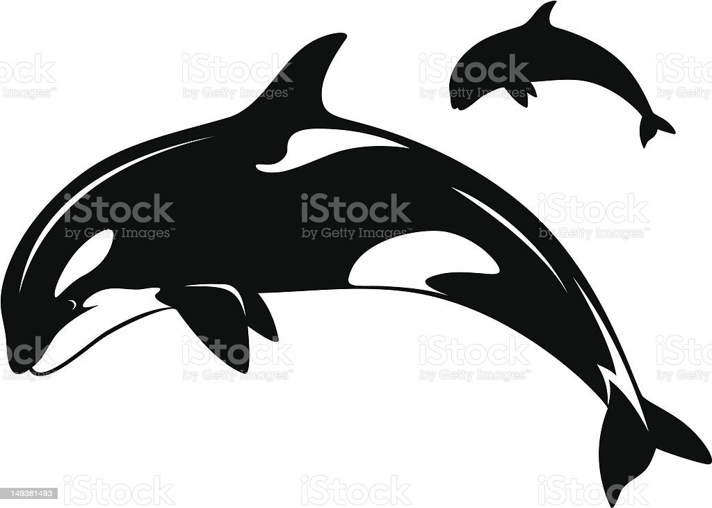 Black and white illustration of two killer whales royalty-free stock vector art