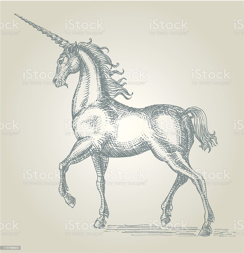 Black and white pencil illustration of a unicorn royalty-free stock vector art