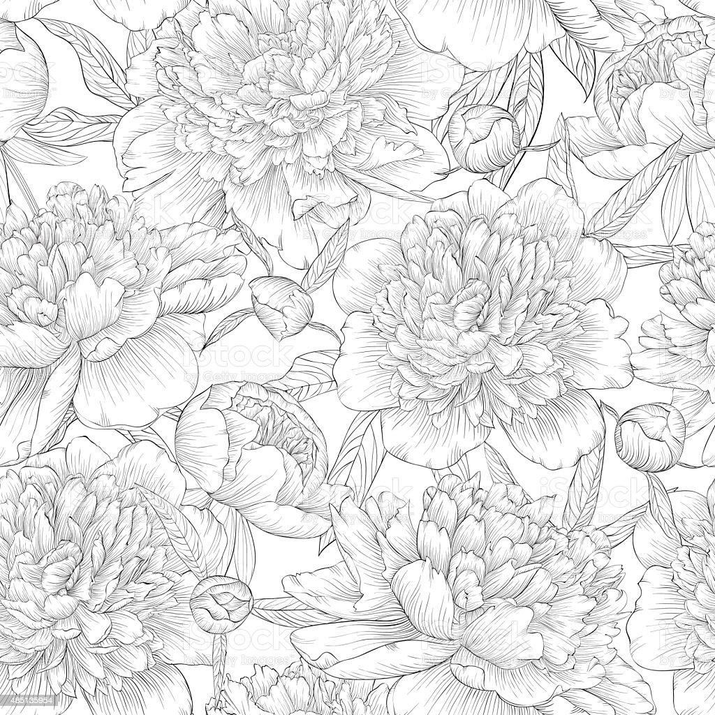black and white seamless background. peonies with leaves and bud. vector art illustration
