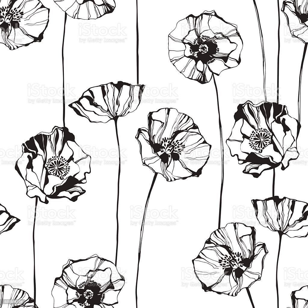 Black and white seamless pattern with poppies. Hand-drawn floral background. vector art illustration