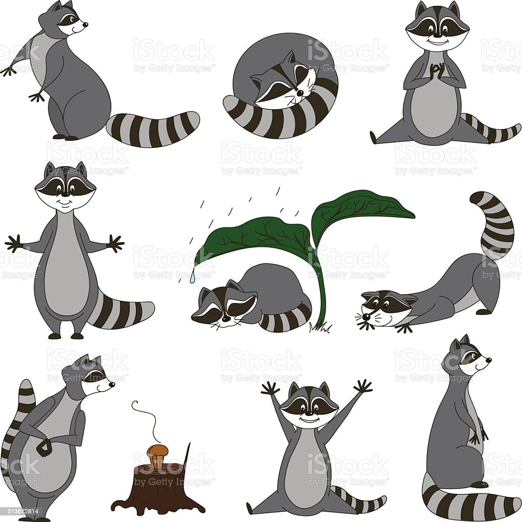 Black and white set, cartoon raccoons. Vector vector art illustration
