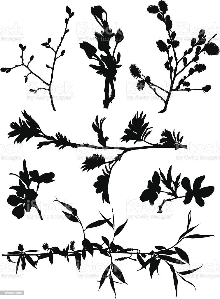 Black branches silhouettes vector art illustration