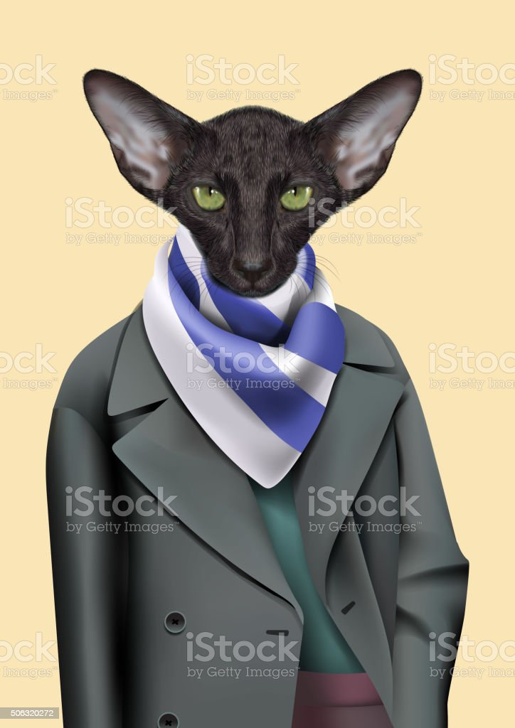 Black Cat boy dressed up in casual city style. vector art illustration