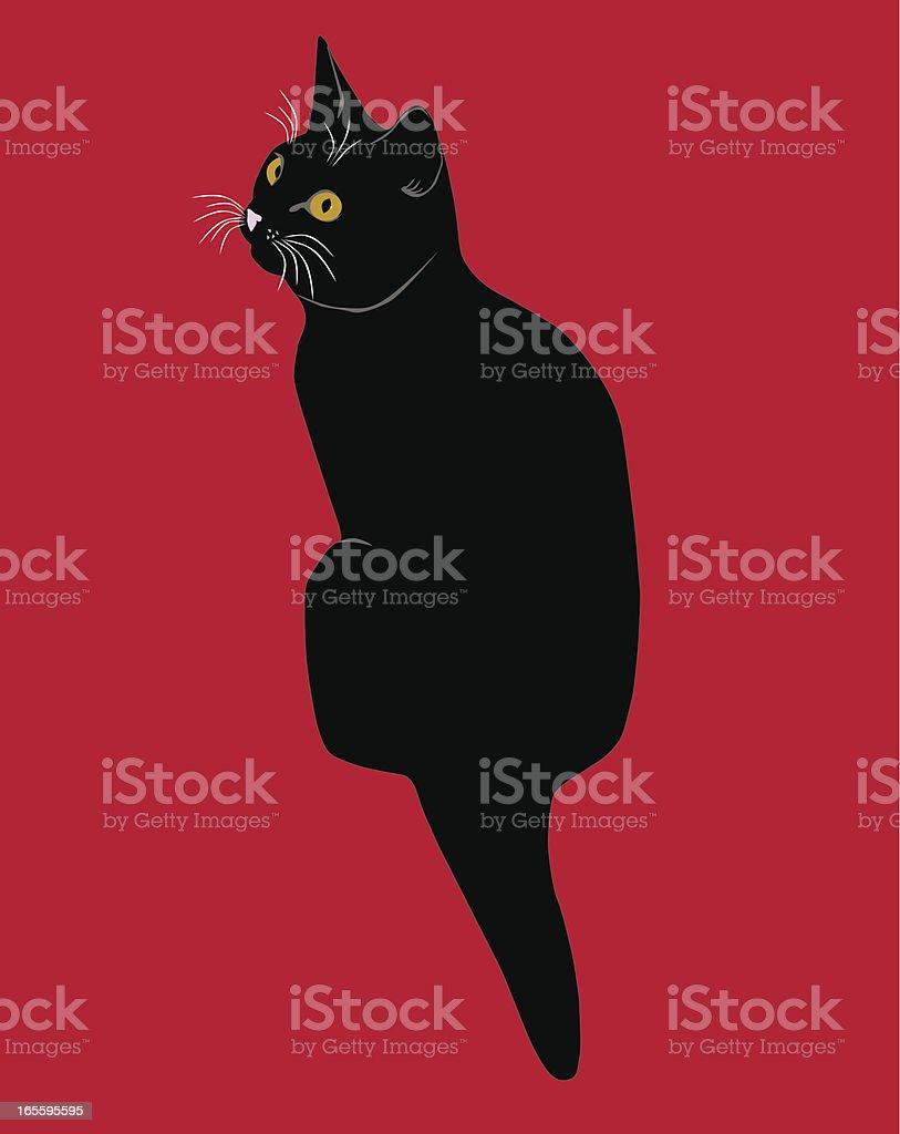 black cat o mascota illustracion libre de derechos libre de derechos
