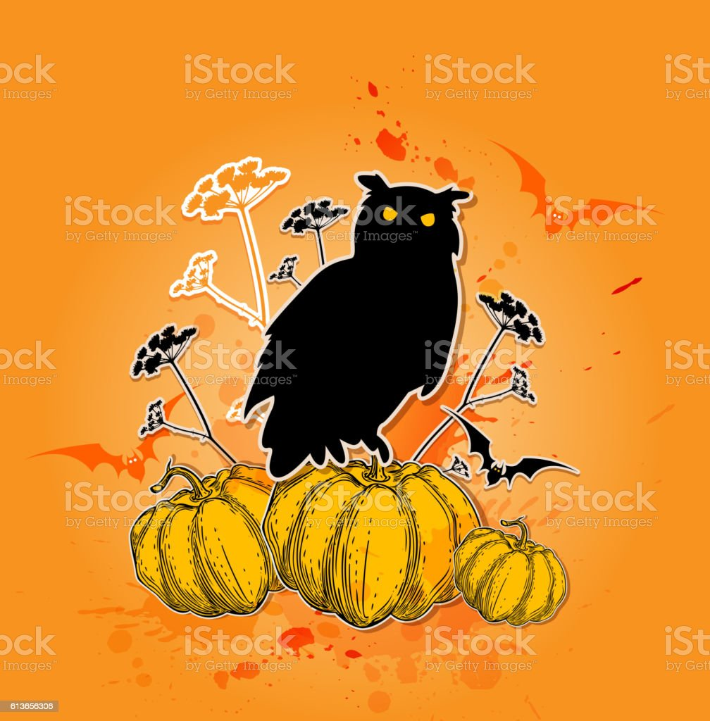 Black owl and pumpkins. vector art illustration