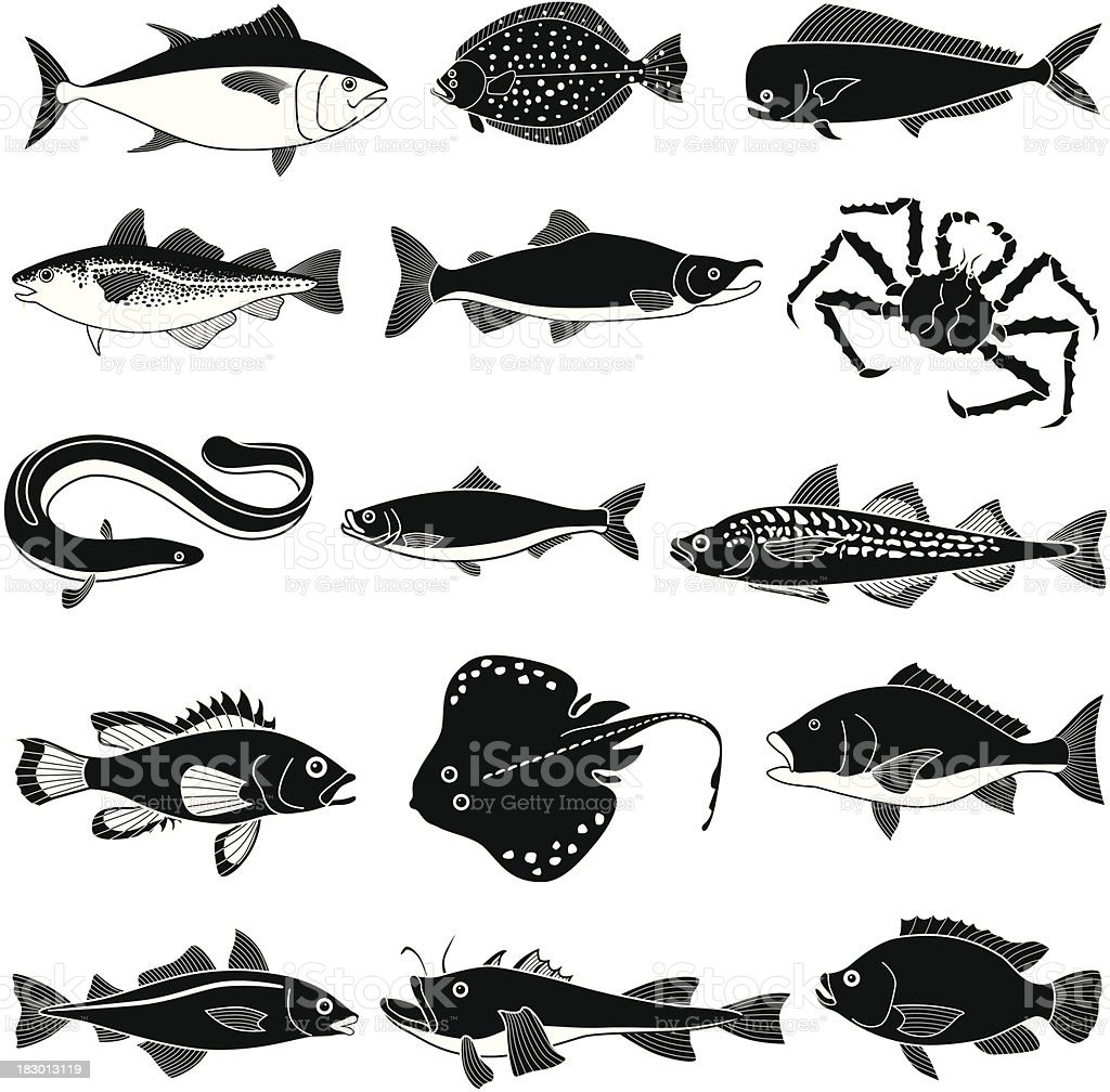 Black saltwater fish icons on white background vector art illustration