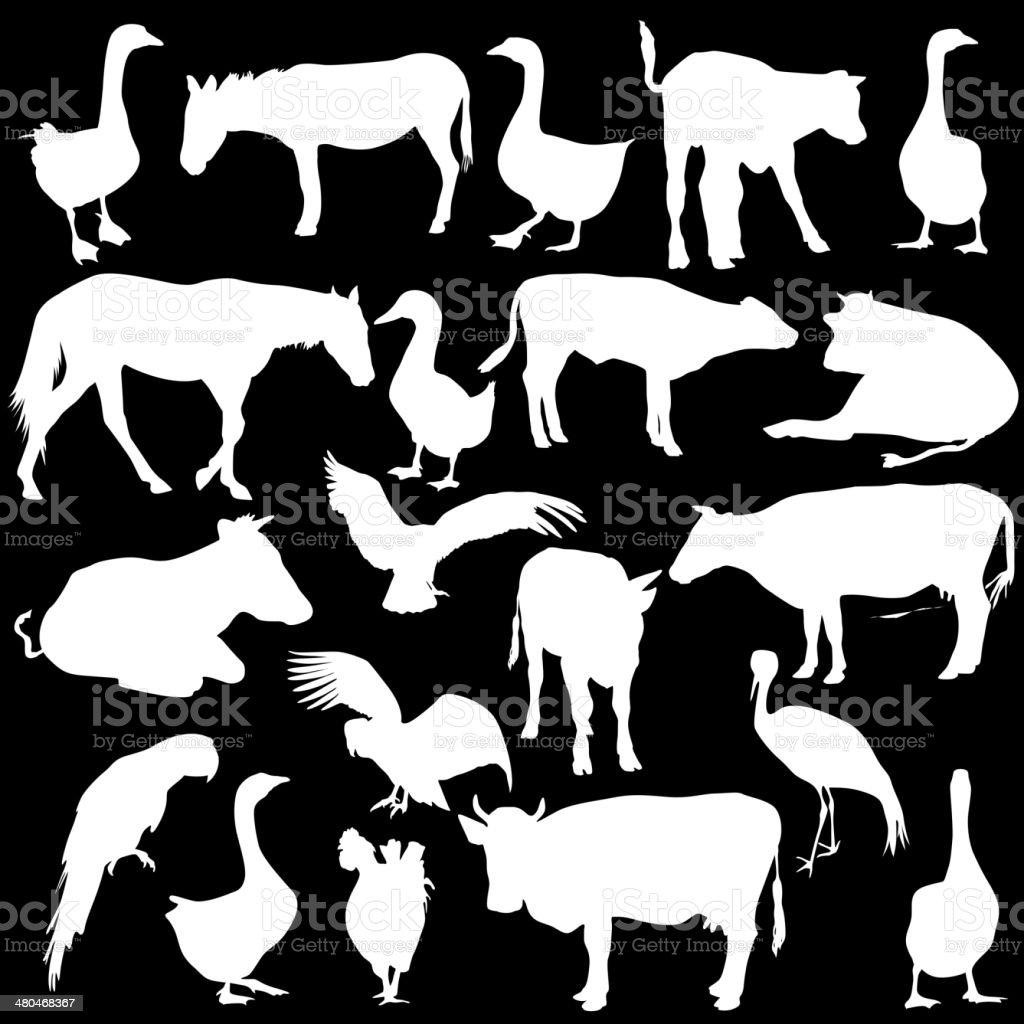 シルエットブラックセット動物 のイラスト素材 480468367 | istock