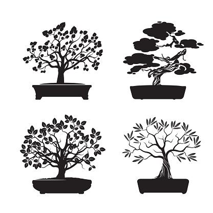Bonsai Tree Background Clip Art, Vector Images & Illustrations ...