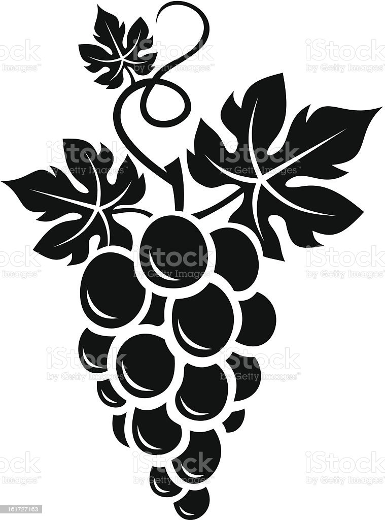 Black silhouette of grapes. Vector illustration. vector art illustration