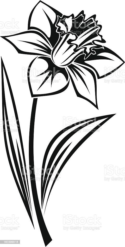 Black silhouette of narcissus flower. Vector illustration. vector art illustration