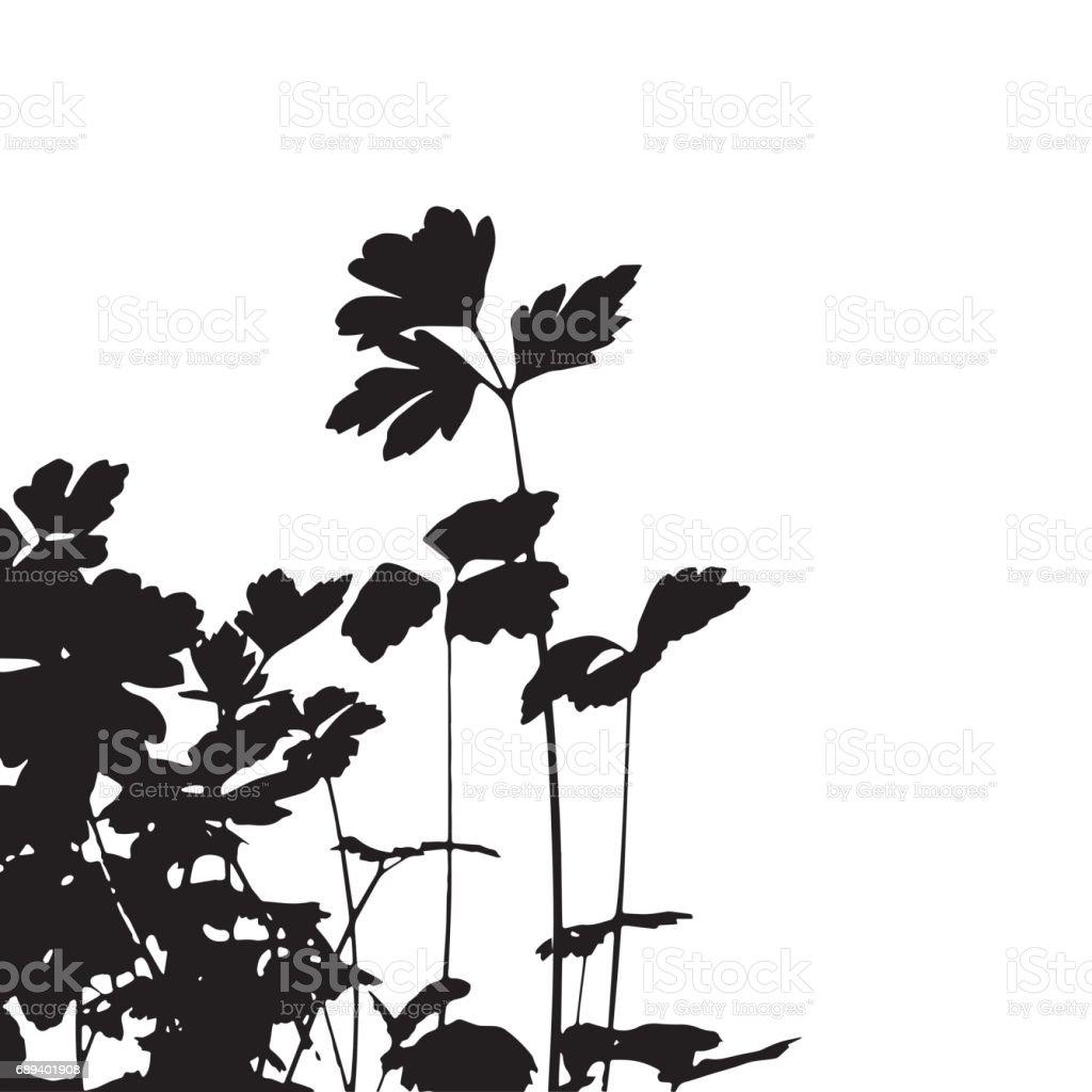 Black silhouette of plants on white background. vector art illustration