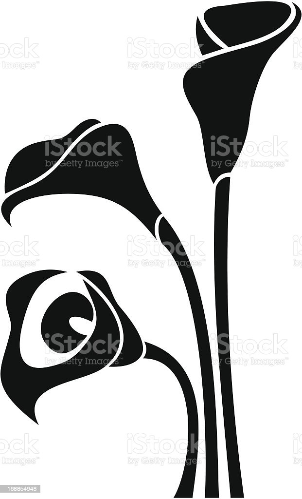 Black silhouettes of calla lilies. Vector illustration. vector art illustration