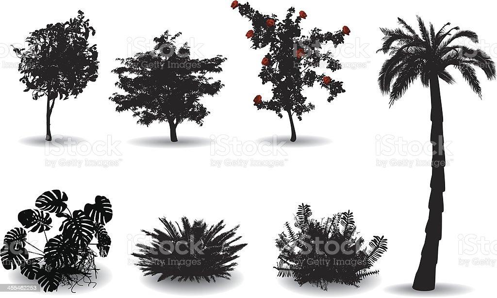 Black silhouettes on white of ornamental plants vector art illustration
