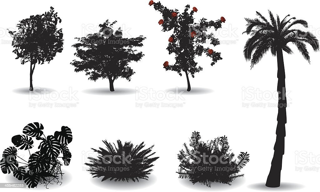 Black silhouettes on white of ornamental plants vector art illustration