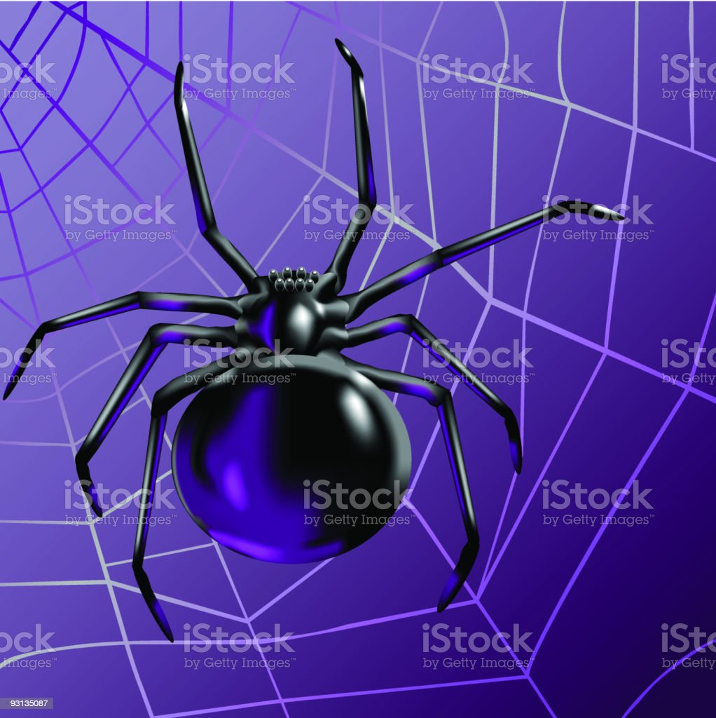 Black Spider royalty-free stock vector art