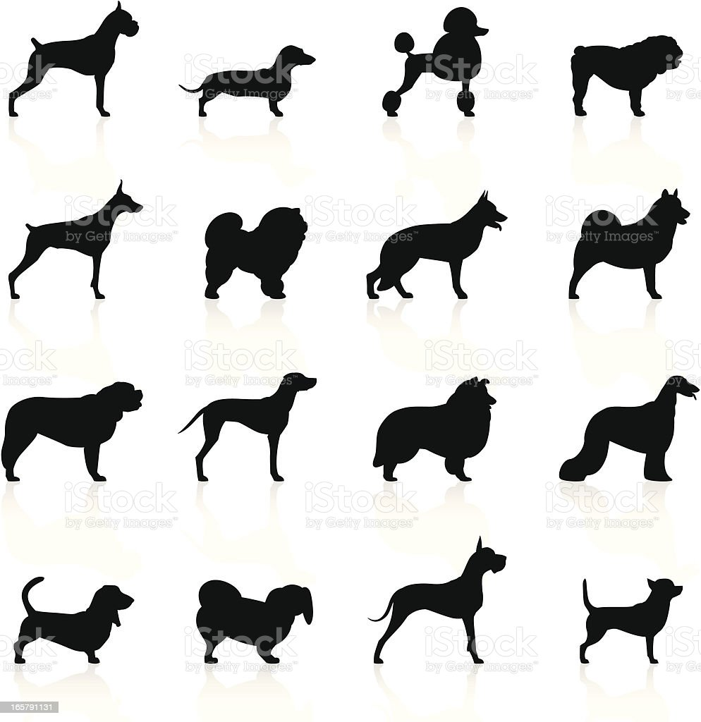 Black Symbols - Dogs vector art illustration