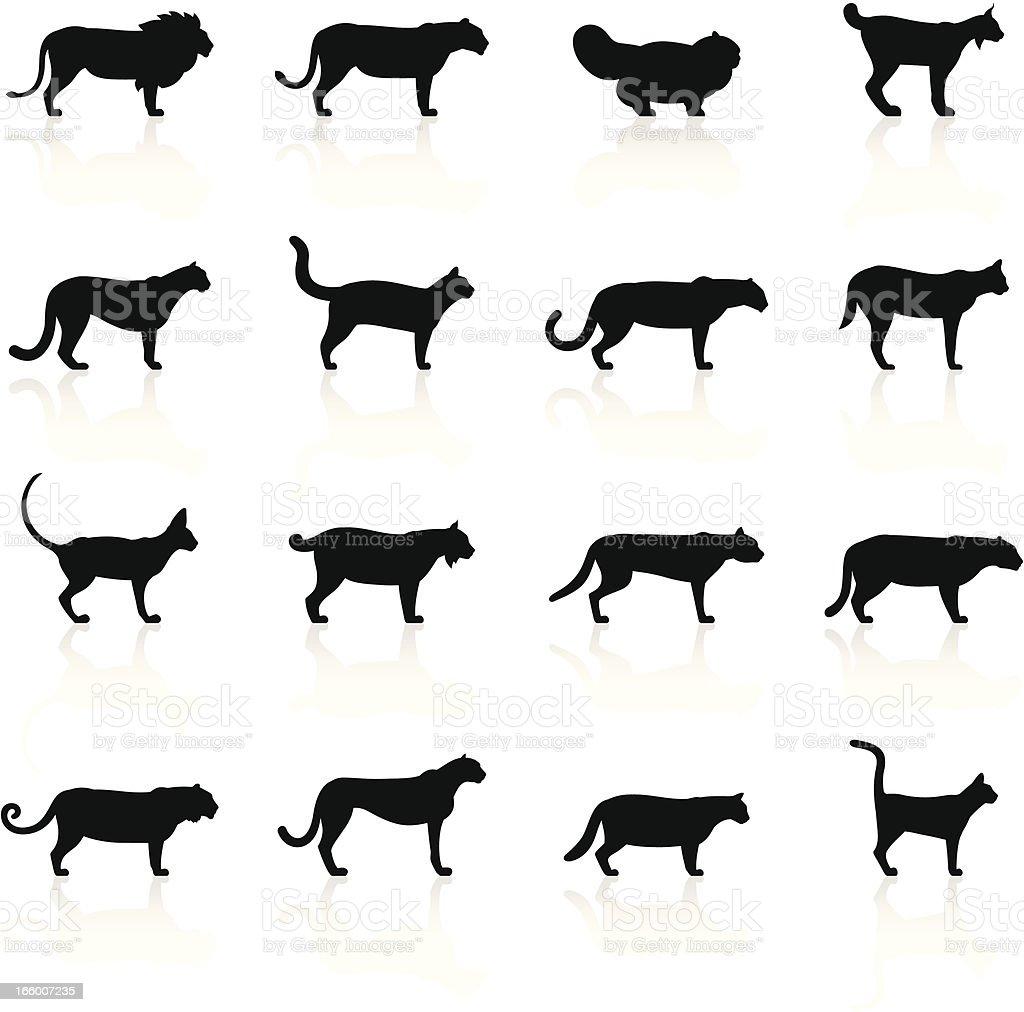 Black Symbols - Felines vector art illustration