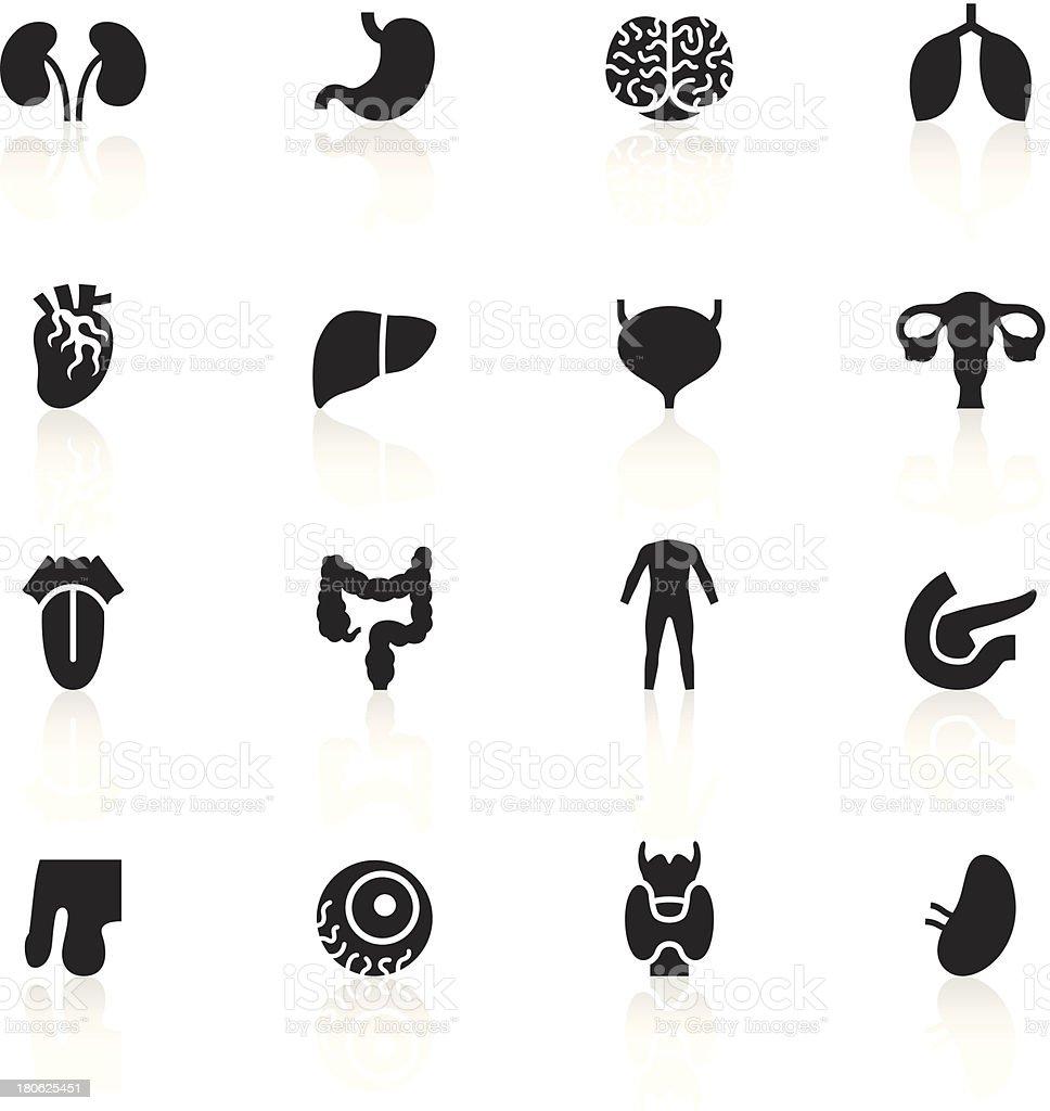 Black Symbols - Human Organs vector art illustration