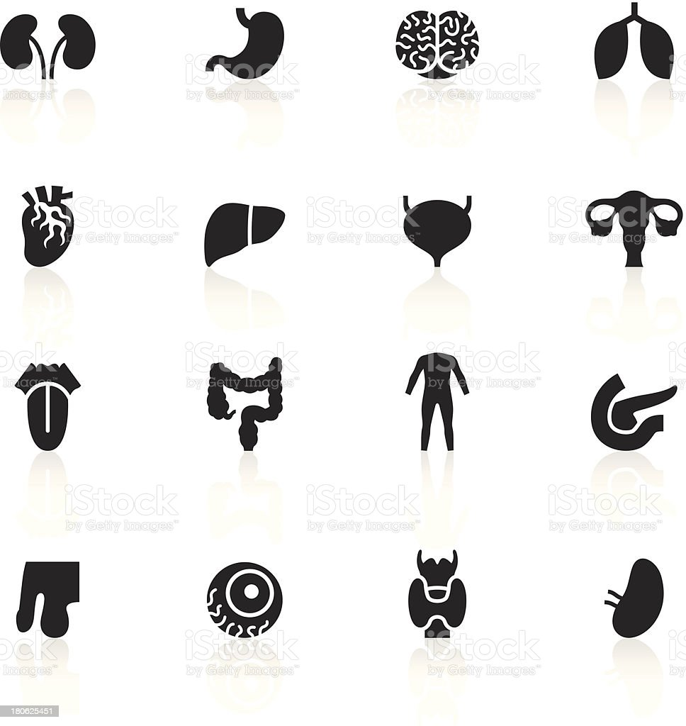 Black Symbols - Human Organs vector art illustration