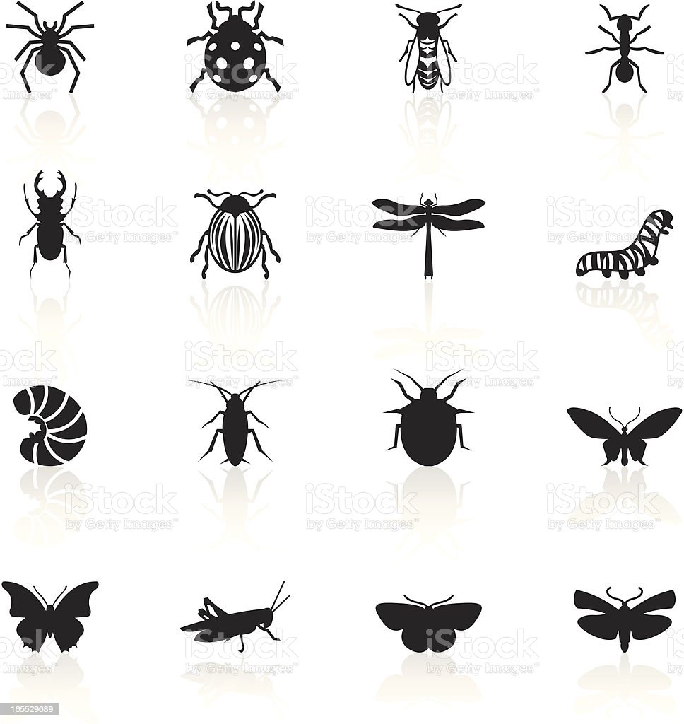 Black Symbols - Insects vector art illustration