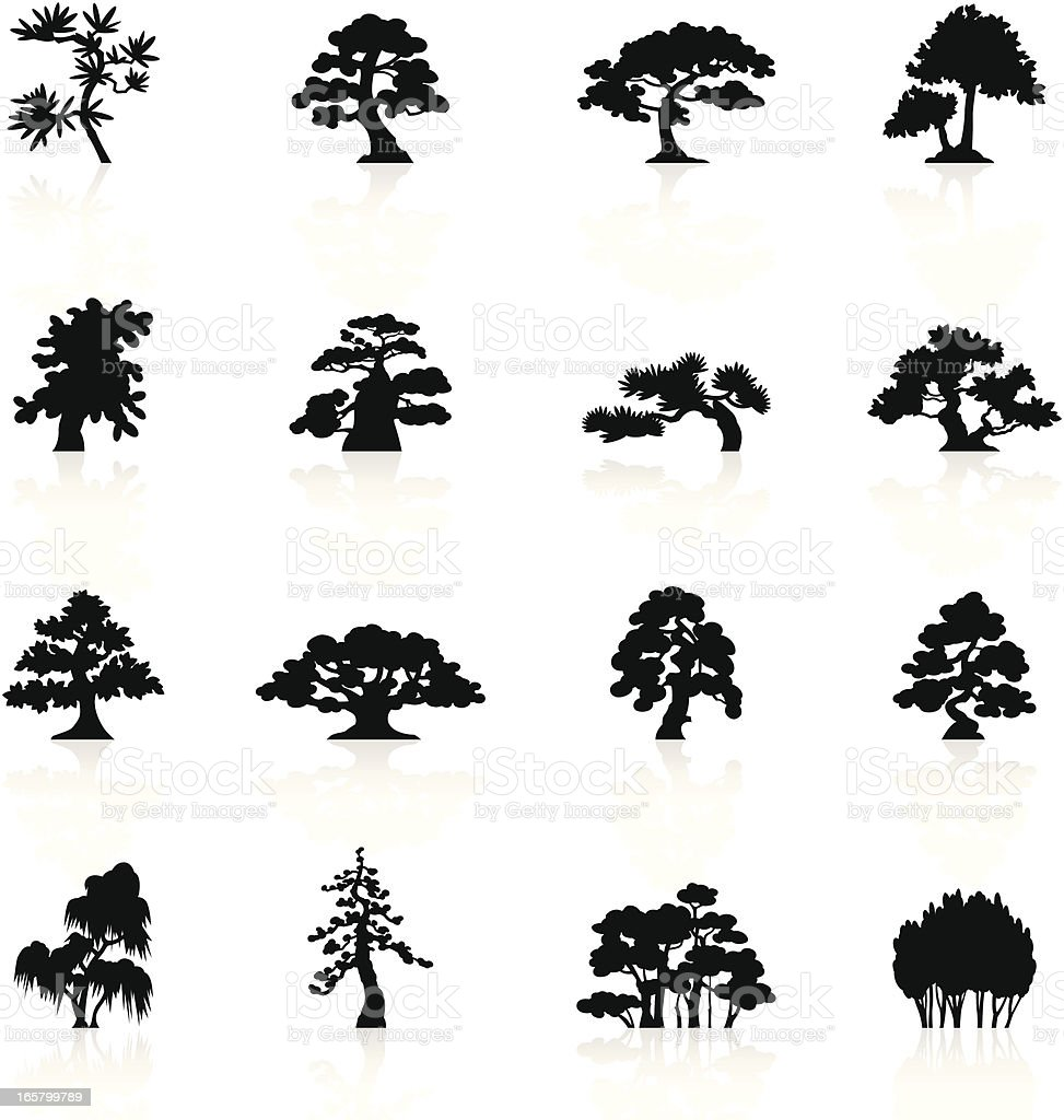 Black Symbols - Trees Species royalty-free stock vector art